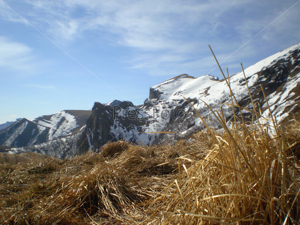 Сухая трава на фоне снежных гор
