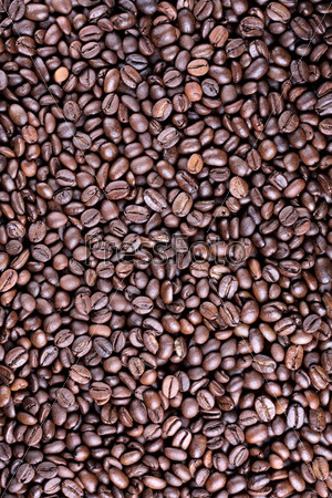 Background full of roasted coffee beand