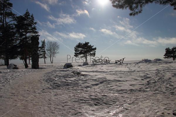 Зимний пейзаж с сосной