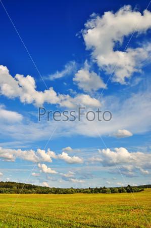 Фотография на тему Летний пейзаж