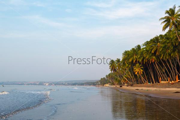 Пляж, пальмовые деревья и небо
