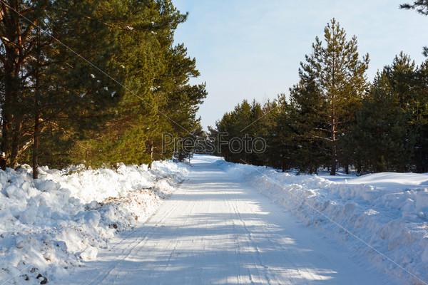 Фотография на тему Зима и деревья в снегу