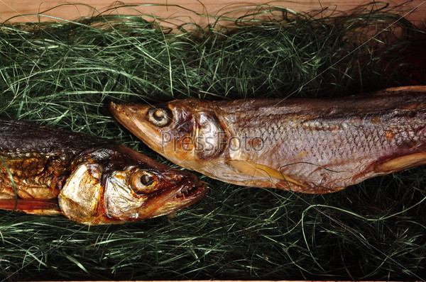 Две рыбы в коробке