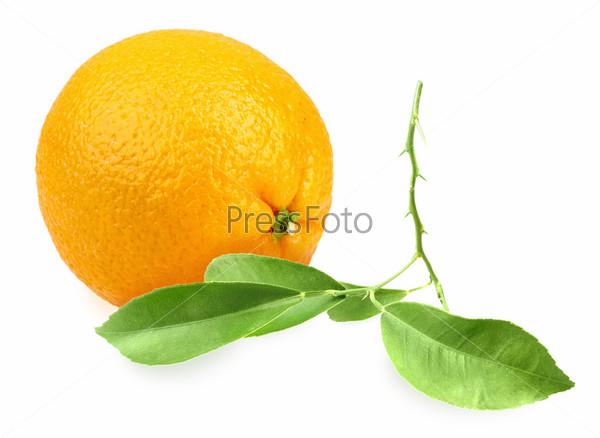 Фотография на тему Апельсин с зелеными листьями