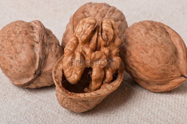Грецкие орехи на старой ткани
