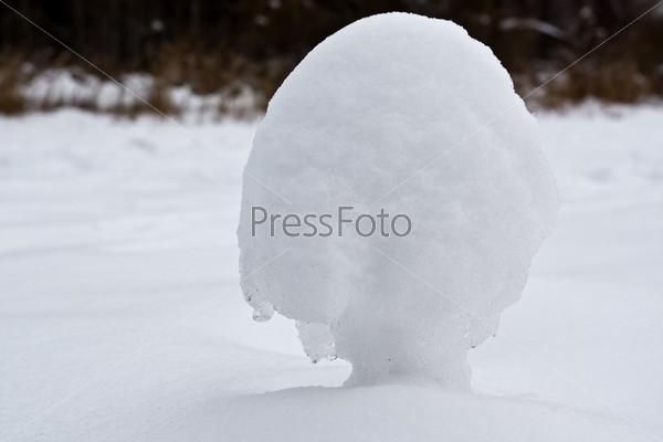Фотография на тему Снежный гриб