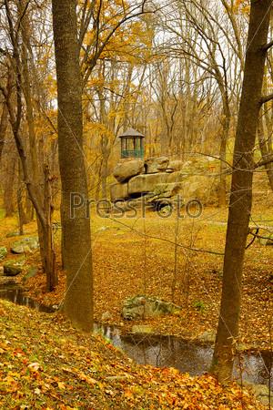 Фотография на тему Беседка и деревья в осеннем лесу