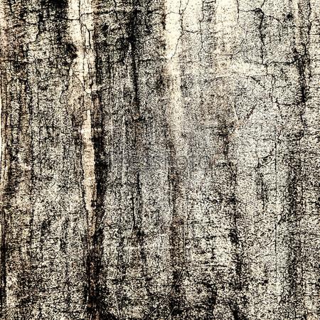 Абстрактный фон из потрескавшейся коры