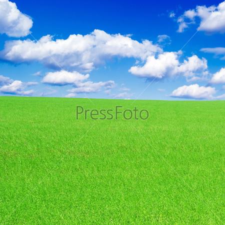 Фотография на тему Зеленое поле