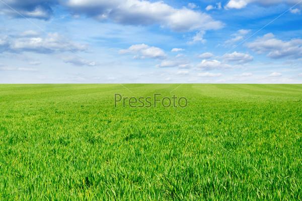 Фотография на тему Пейзаж