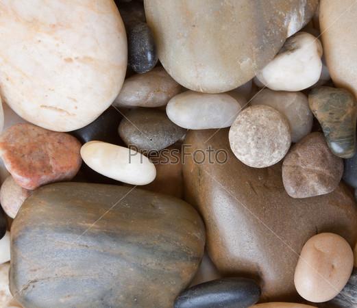 Большие морские камушки