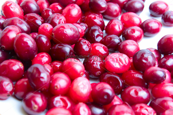 Спелые ягоды клюквы, богатые витаминами