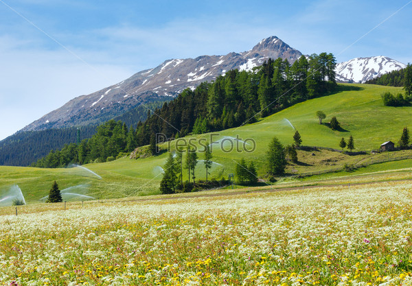 Оросительная система в летних Альпах