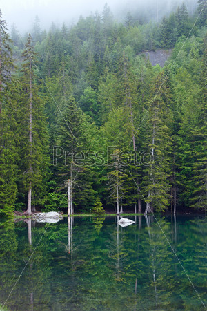 Небольшое горное лесное озеро