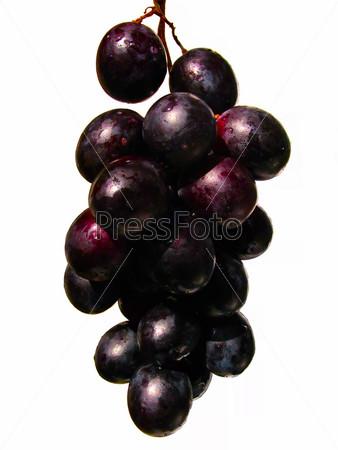 Гроздь свежего красного винограда с каплями воды