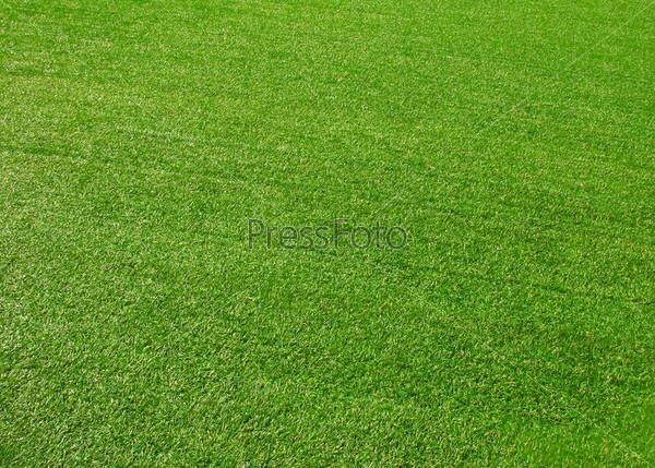 Зеленая трава, фон