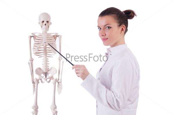 Доктор со скелетом на белом фоне