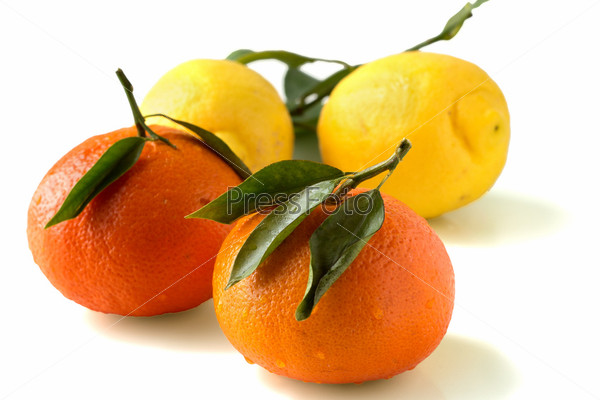 Фотография на тему Мандарины и лимоны