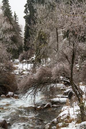 Живописный зимний пейзаж с замерзшими деревьями и рекой, Алматы, Казахстан, Азия