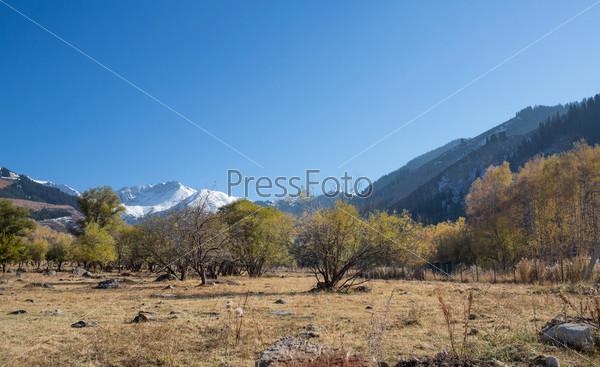 Панорама природы и горного ущелья Каскелен в Алматы, Казахстан