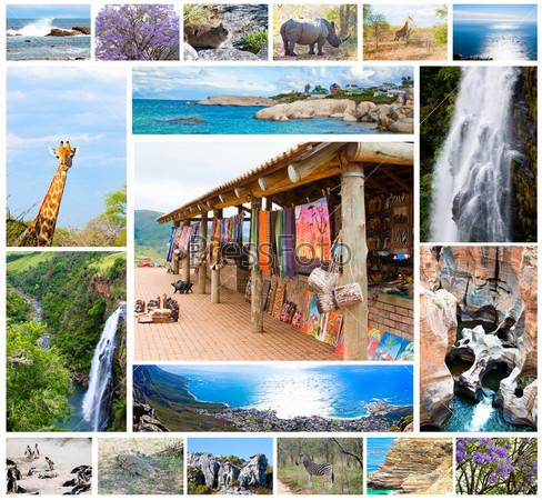 Коллаж с африканскими дикими животными и разнообразной фауной в парке Крюгера. Красивая природа Южной Африки, приключения и путешествия