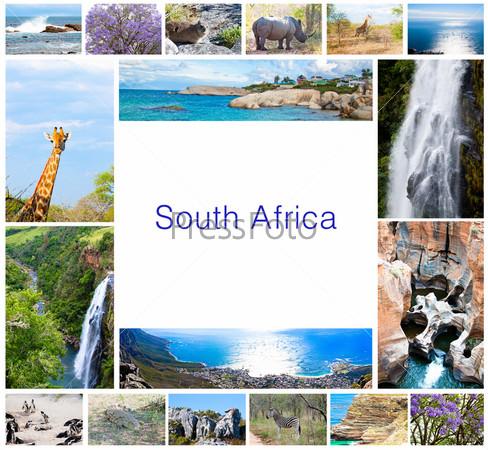 Фотография на тему Коллаж с африканскими дикими животными и разнообразной фауной в парке Крюгера. Красивая природа Южной Африки, приключения и путешествия