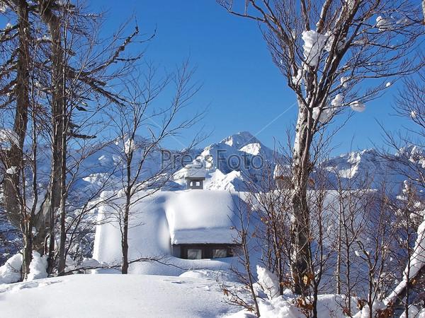 Дом в зимнем лесу на фоне гор