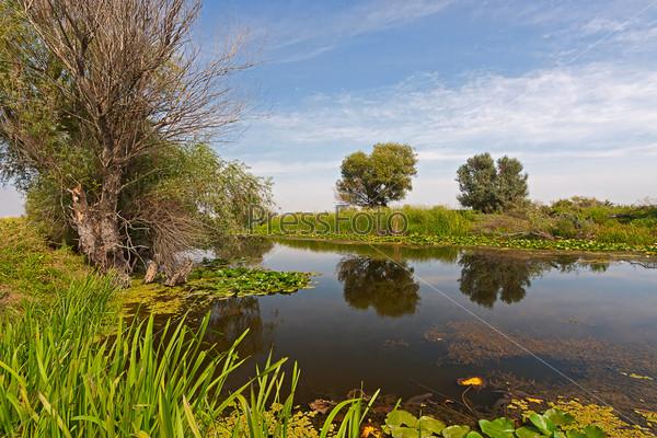 Фотография на тему Берег озера