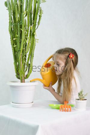 Фотография на тему Девочка поливает кактусы из лейки