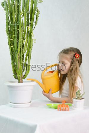 Девочка поливает кактусы из лейки