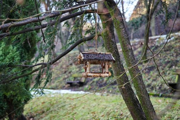 Скворечник на ветке дерева