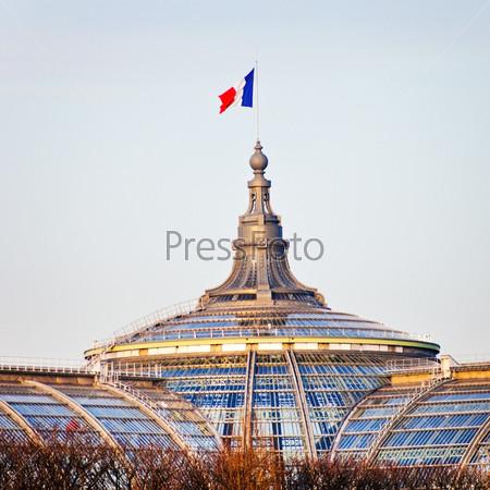 Фотография на тему Французский флаг на Великом дворце в Париже