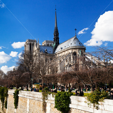 Собор Парижской Богоматери весной