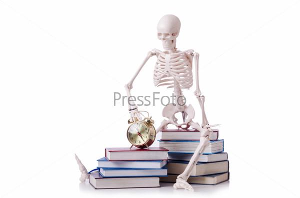 Скелет с книгами на белом фоне