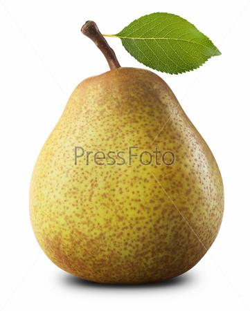 Фотография на тему Спелая груша
