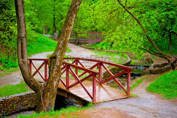 Деревянный мост в зеленом парке через речушку