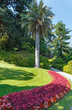 Красивый летний парк