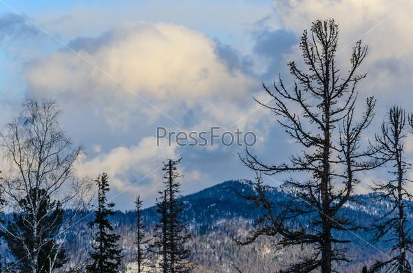 Горнолыжный курорт Шерегеш, горная Шория, Кемеровская область, Россия