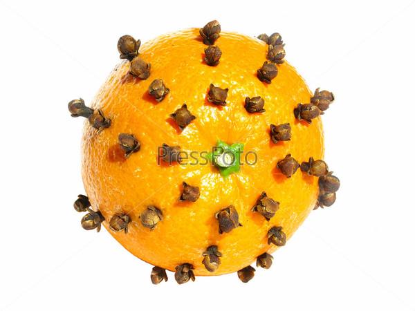 Апельсин с шипами гвоздики