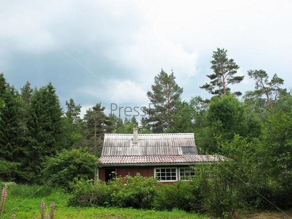 Фотография на тему Деревянный дом в лесу