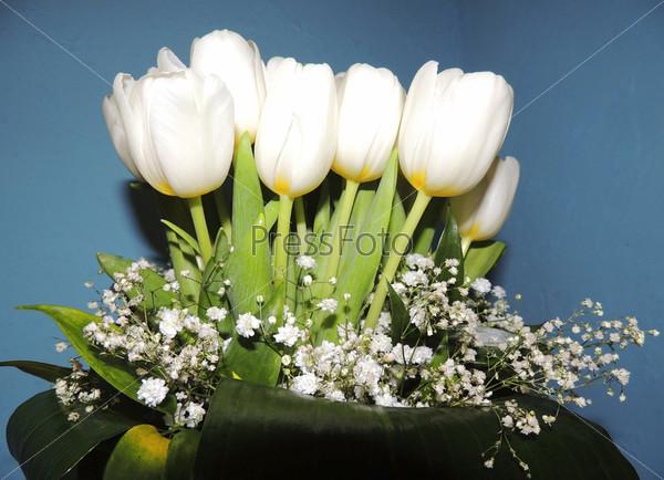Букет белых тюльпанов с гипсофилой