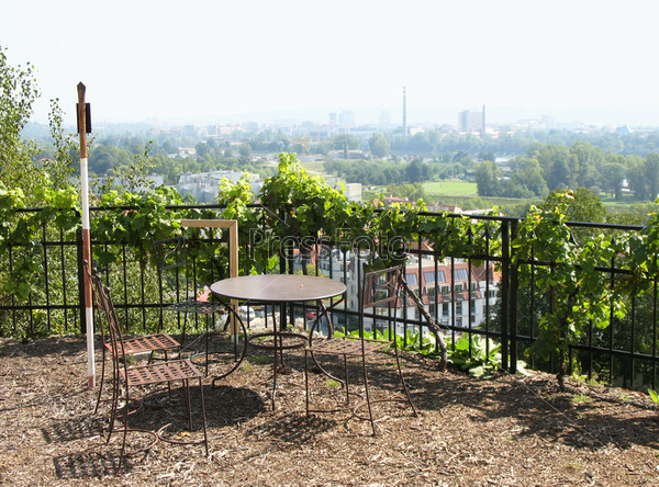 Виноградник в районе Троя на севере Праги, смотровая площадка