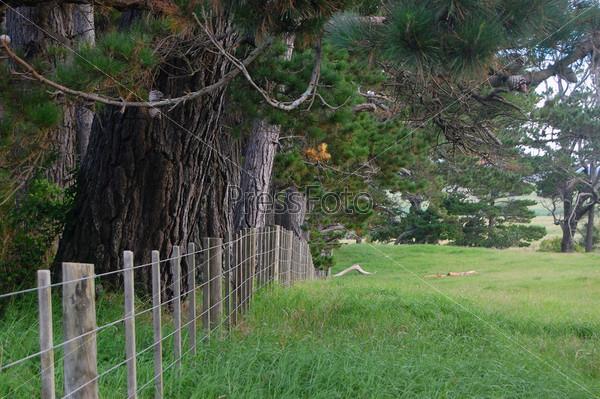 Фотография на тему Забор фермы