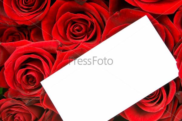 Фотография на тему Красные розы и поздравительная открытка