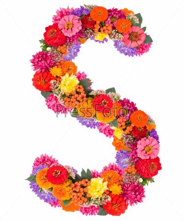 Фотография на тему Цветочный алфавит, изолированный на белом фоне