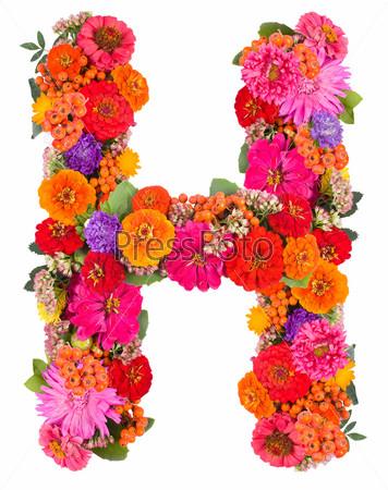 Цветочный алфавит, изолированный на белом фоне
