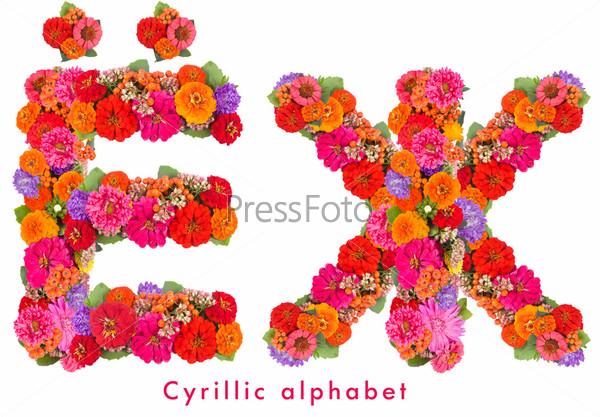 Буквы алфавита из цветов, изолированные на белом