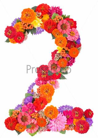 Цифра 2 из цветов