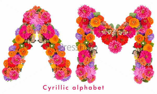 Кириллица. Алфавит из цветов, изолированный на белом фоне