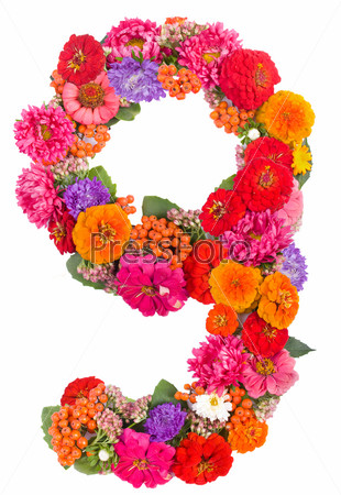 Цифра 9 из цветов
